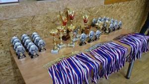 Hausn-medaile