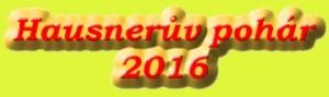 Hausn2016