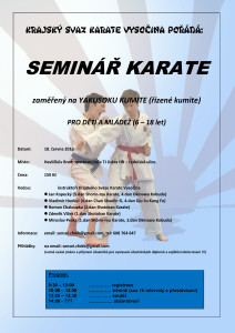 Seminar HBrod -yakusoku kumite 2016-06-18